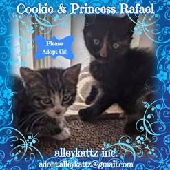 cookie & princess rafael.jpg