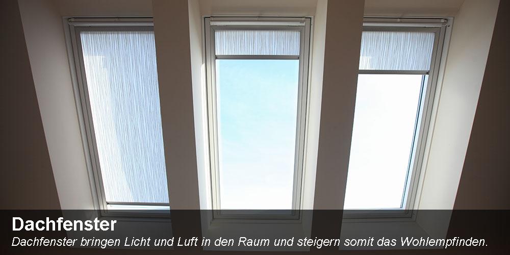 dachfenster_text