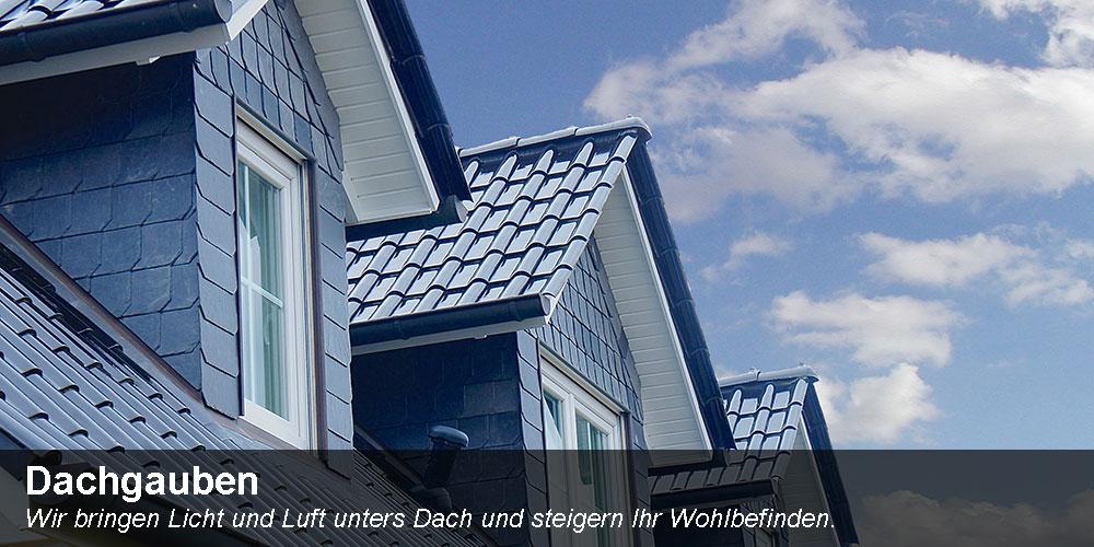 dachgauben_text