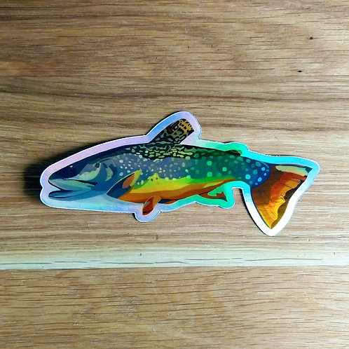 Brook Trout Holographic Sticker