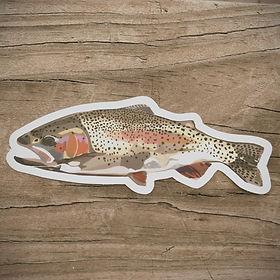 rainbow_trout_sticker_edited_edited_edit