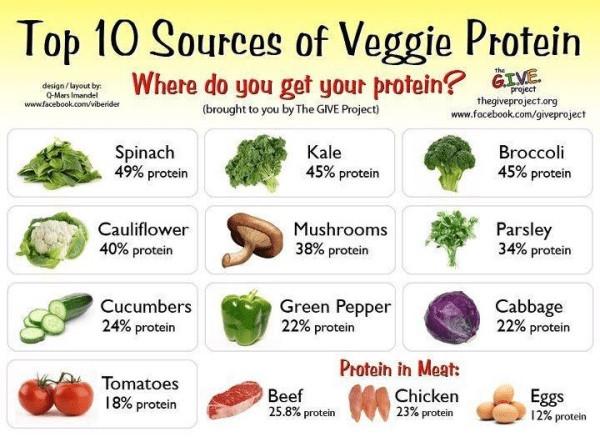 vegan protein, protein, steak, beans, vs, health, aware, vegan, go vegan, model, whitney, antm, source, kale, spinach, tomatoes, protein, pepper, better