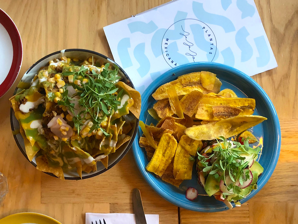 vegan, nachos, vegan ceviche, nyc, antm, heart of palm ceviche, jajaja, restaurant review, whitney's wanders, food blog, blog, whitney, whitney thompson, top model, plus model, food