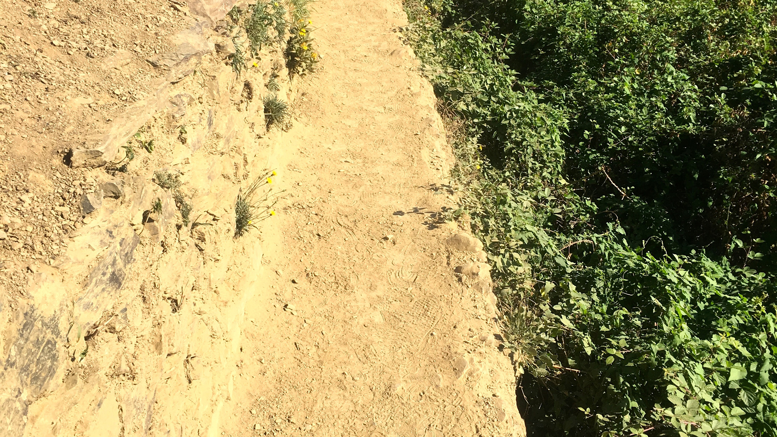 The narrow path with no rail!
