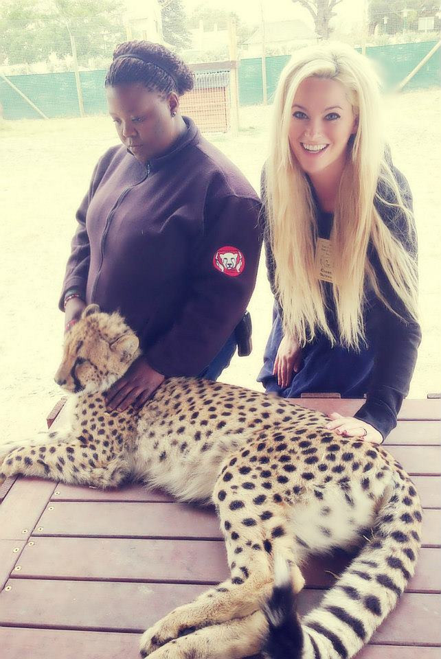 whitney, whitney's wanders, travel, south africa, cheetah, cheetah sanctuary, model, beach, antm, plus model, curve, blonde, africa, south africa, america's next top model, winner