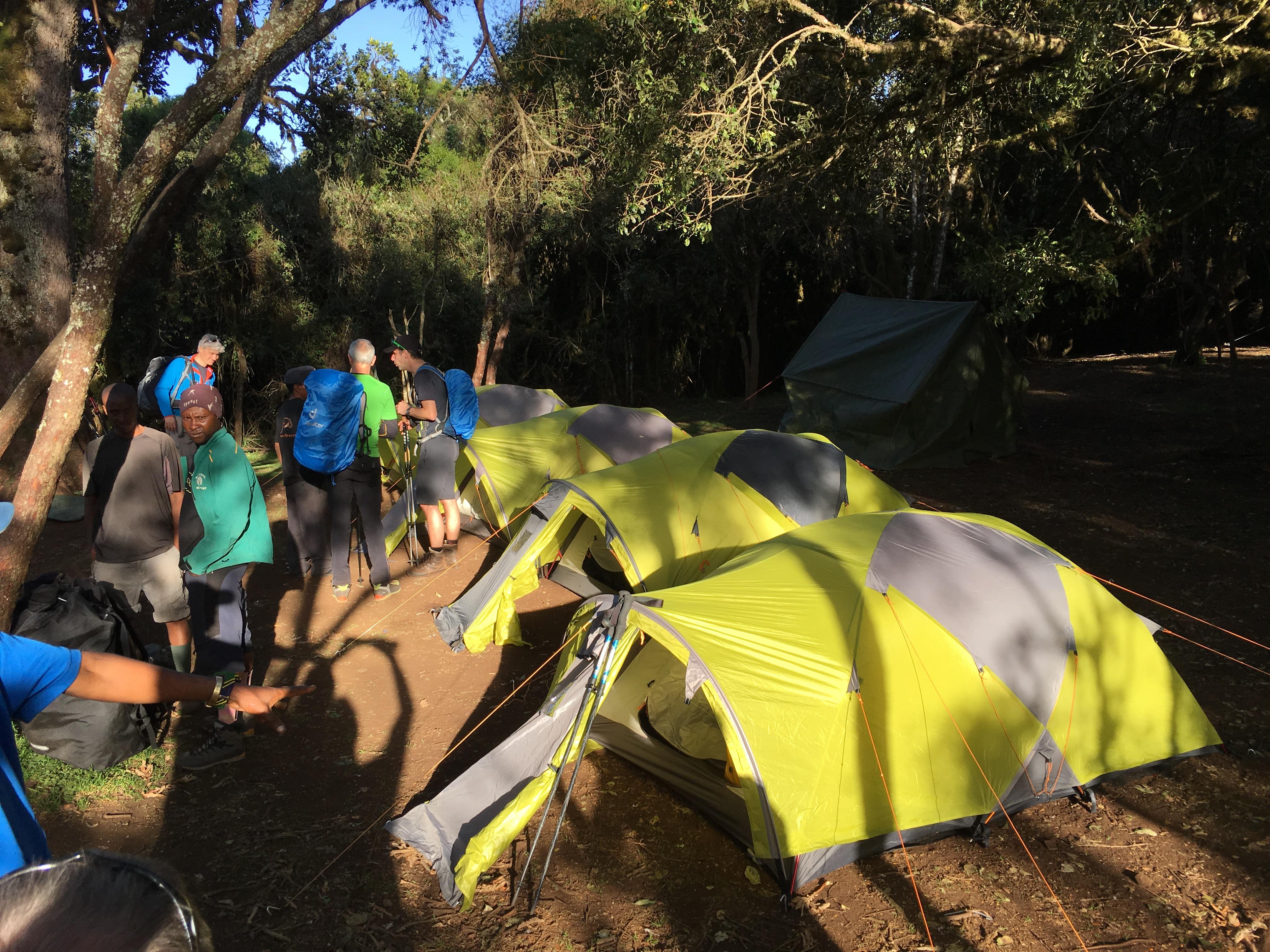 zelte_big_tree_camp