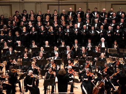 5 Ways You Can Stay Engaged with your SLSO