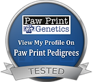 ava genetic testing paw.png