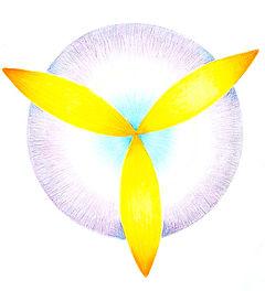 tekening symbool.jpg
