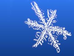 Brrr-illiant Ways To Winter