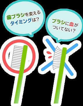 歯ブラシを変えるタイミング