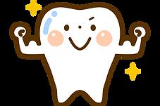 元気な歯のイラスト