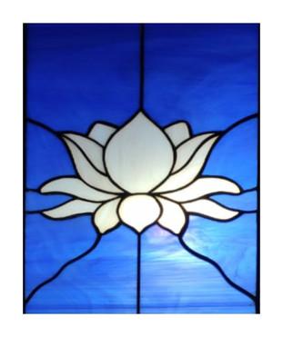 White Lotus Lightbox