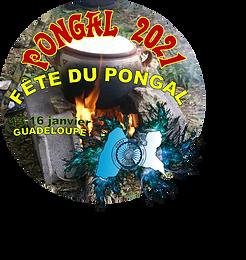 Fête du Pongal