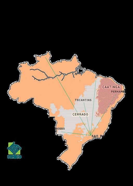 Poster Cerrado Caatinga 30x42.png