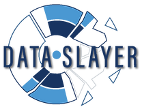 Data Slayer Logo for screens.png