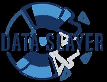 Data Slayer Logo for screens.png