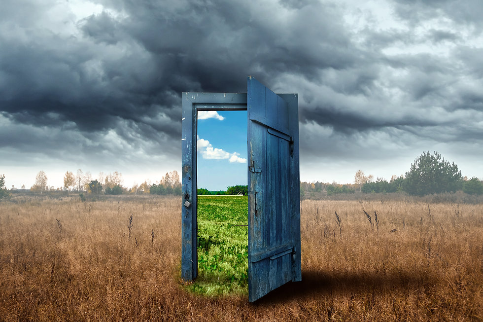 Door in a colorless field opening to a colorful field
