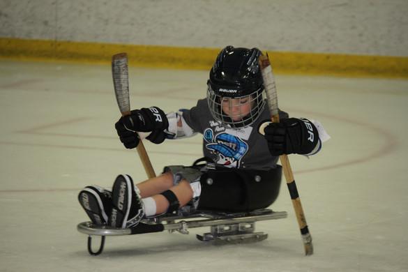 Sled Hockey Clinic Castle Ice August 201