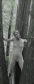 woods fairy009ua.jpg