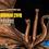 Thumbnail: King Ghidorah Statue - Deluxe Edition