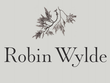Robin Wylde: What is happening now?