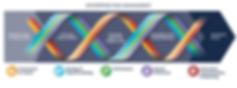 Figura 4 – FRAMEWORK REVISADO 2017 – COSO ERM Enterprise Risk Management, Integrado à Estratégia e Desempenho  Fonte: COSO ERM Enterprise Risk Management, Integrating with Strategy and Performance Executive Summary, 2017
