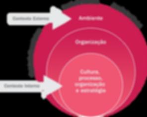 revista gestão de riscos online, antonio brasiliano, contexto interno e externo, cenários prospectivos