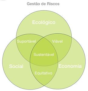 Revist Gestão de Riscos 114 - INTROCUÇÃO A GESTÃO DE RISCOS DE SUSTENTBILIDADE