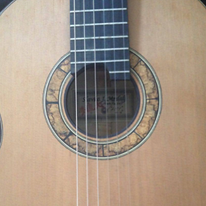 mrdalj-guitar-1.png