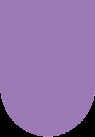 medium purple oblong.png