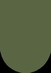 dark green oblong.png