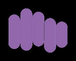full color emblem .png