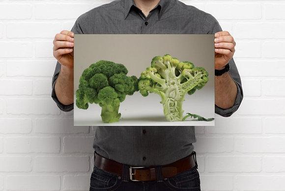Broccoli Prints