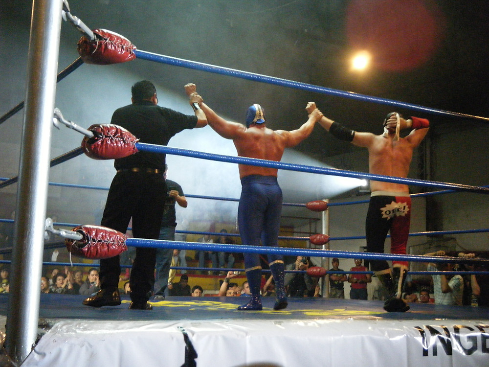 Fighters in a ring