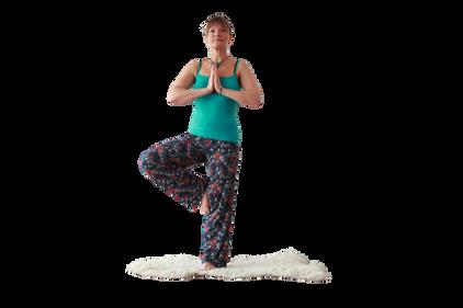 yoga_model (2).png