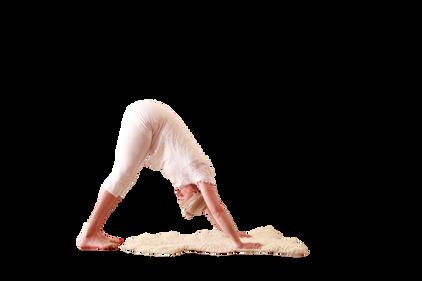 yoga_model (4).png