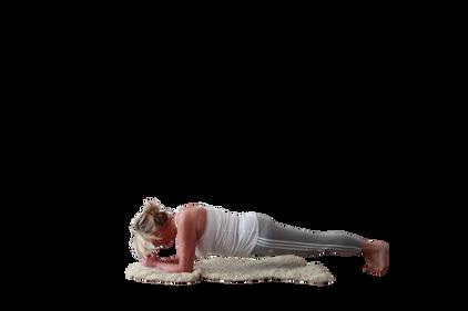 yoga_model (9).png