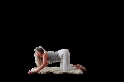 yoga_model (15).png