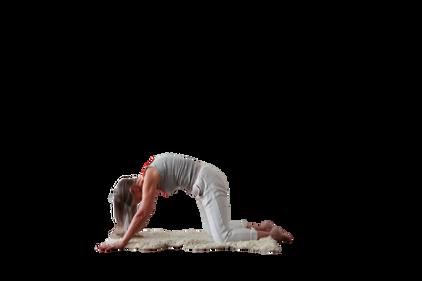 yoga_model (8).png