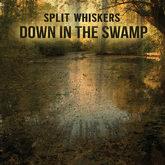 Split Whiskers | Down In The Swamp