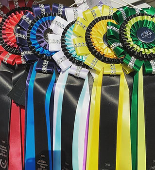 Champs Ribbons.jpg