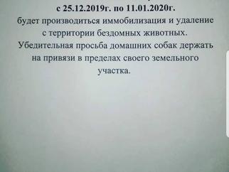 Готовящийся отлов в Марьянском с.п.