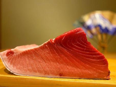 【Sushi Little University】ついにオープン!!