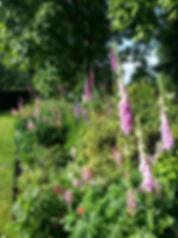 Orchard View Garden.jpg