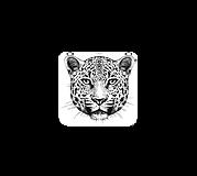 Calendrier Maya avec Jaguar 3.png
