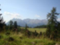 Vista sul sentiro verso l'itinerario di Malga Bocche. Noleggio Ski e E-Bike Mattioli Service