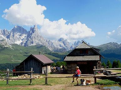 Vista sulle meravigliose Pale di San Martino con la Malga Bocche, arrivo del nostro itinerario, in primo piano. Noleggio Ski e E-Bike Mattioli Service