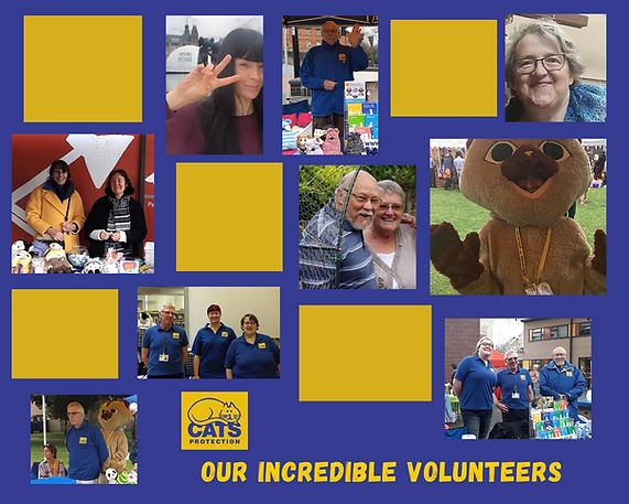 Our incredible volunteers.png