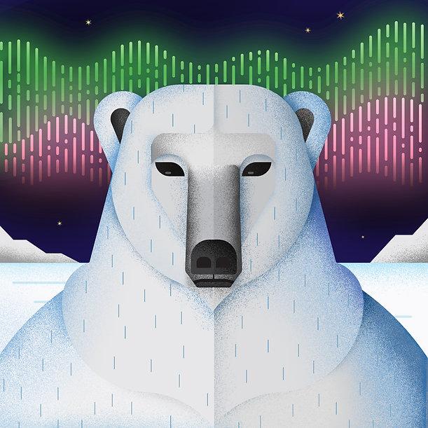 polar bear 3.2.jpg